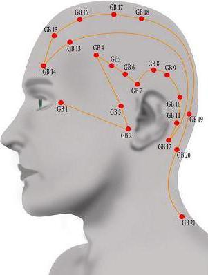 punkty akupunktury do montażu