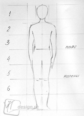 أبعاد الإنسان نسب جسم الإنسان للفنان