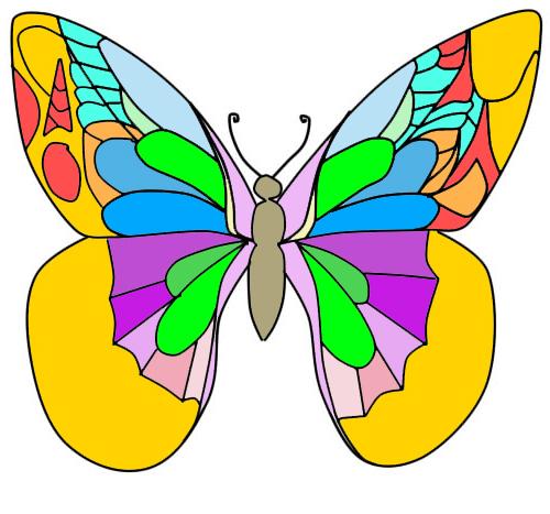 Comment Dessiner Différents Papillons Comment Dessiner Un